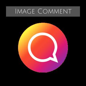 Image Comment